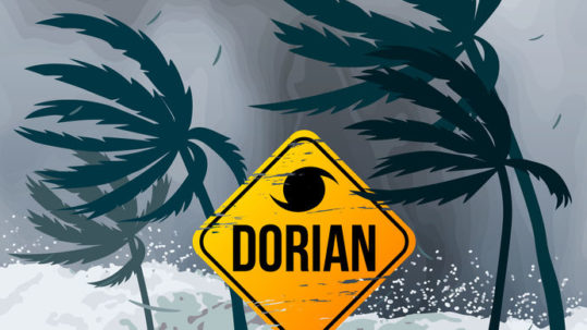 Boca Bayou in Boca Raton Unscathed by Hurricane Dorian